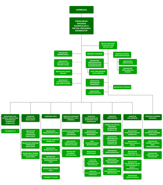 Carta Organisasi TH